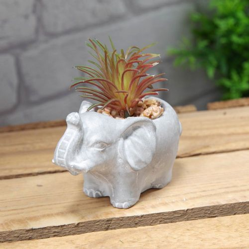 Mini Elephant Planter with succulent - cement planter home ornament
